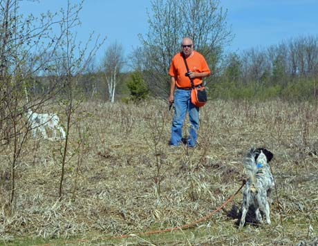 Jeff Hintz carefully watches a young dog in for training. He knows exactly the right time to fire the pistol and release the bird.