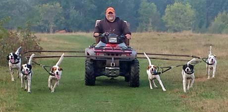 In August, a whole new routine begins. I begin training dogs on wild birds both from home and at our North Dakota camp. Dan conditions adult dogs from a four-wheeler.