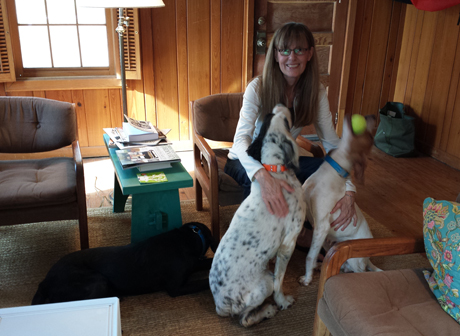 "Jerry and I are equal opportunity dog owners and usually have three ""house"" dogs. Shaq, a setter, is descended from our first setter Charlie; Vixen is a great granddaughter of our first pointer Dancer.  Labrador retrievers are represented, too, by May."