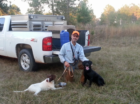A favorite training session for Jerry and me is to take some dogs out at the end of the day. The temperatures have cooled, birds are plentiful and scenery is outstanding. Basil (Elhew G Force x Northwoods Vixen, 2013) and our Labrador retriever May pose with Jerry as the sun sets.