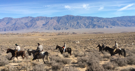 The California Chukar Championship and companion derby stake are held in a valley against the beautiful backdrop of the Alabama Hills.