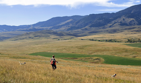 The high plains of Montana are breathtakingly beautiful. And it's easy to see why it's called Big Sky Country.