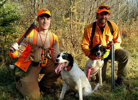 One-year-old handsome male littermates, Hartley, on left, and Elmer after an October grouse hunt. Hartley is owned and handled by Nick Larson and Elmer is owned by Luke Olson, handled here by Luke's brother-in-law Chris Bye.