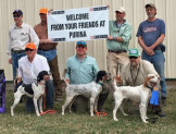 Left to right, Rod Lein with his dog, Joe Byers with Roxy (Northwoods Grits x Houston's Belle's Choice, 2014), Dave Moore with Bette (Northwoods Grits x CH I'm Blue Gert, 2014).
